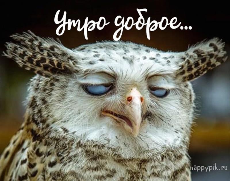 https://happypik.ru/wp-content/uploads/2018/06/s-dobrym-utrom83_happypik.ru_.jpg