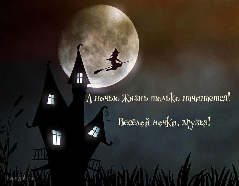 Спокойной ночи, друзья