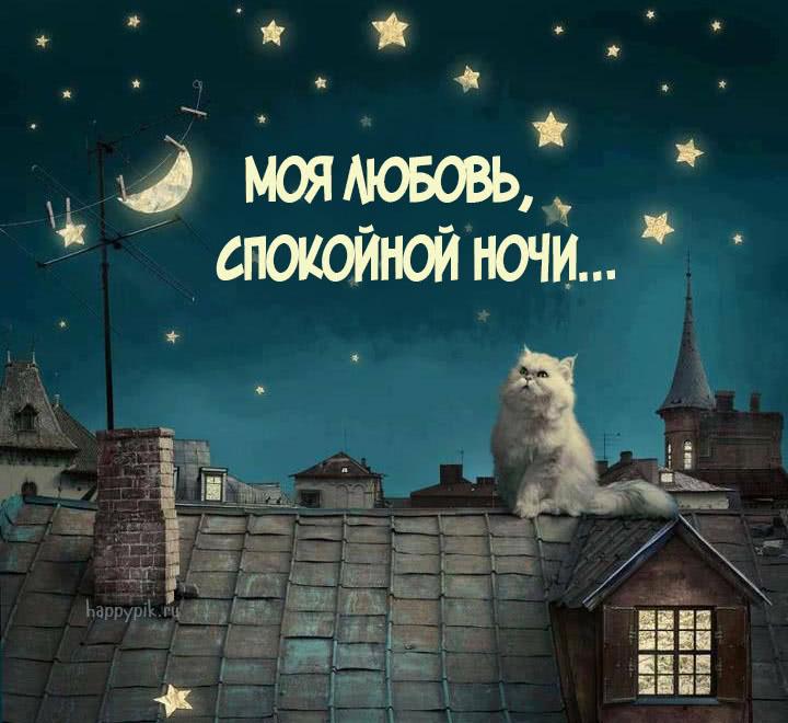 Прикольные картинки спокойной ночи о любви