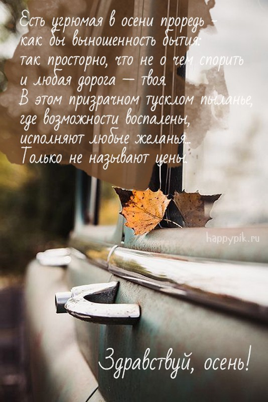Цитаты и стихи про осень