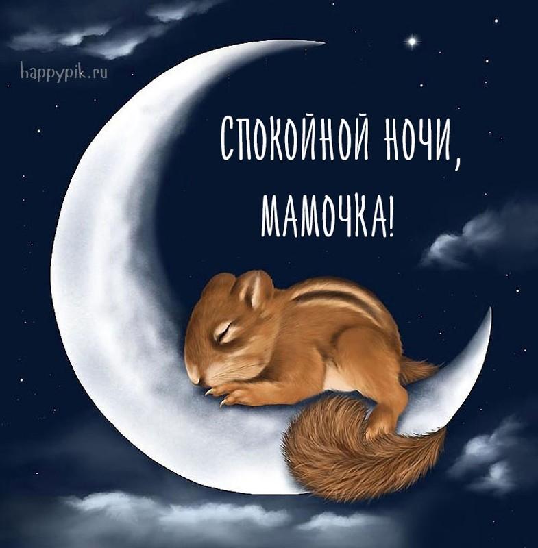 Открытка спокойной ночи любимая моя мама, картинки про животных