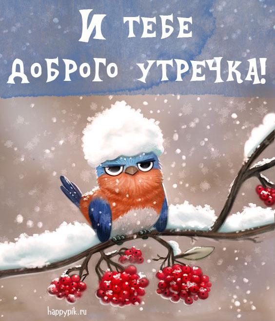 Поздравления с добрым зимним утром
