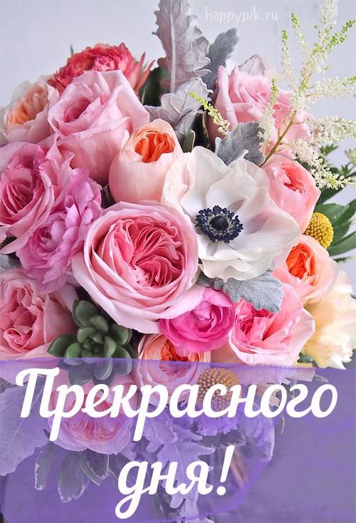россии картинки доброе утро ирина хорошего дня белый мужик для