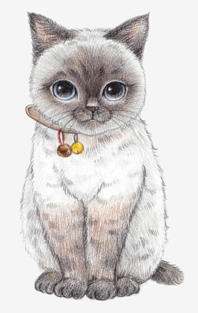 Нарисовать котики картинки