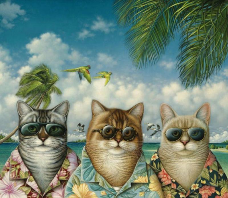 Смешные фото и рисунки кошек